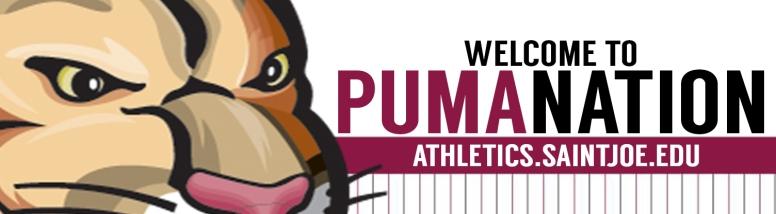 billboard-puma-nation_2