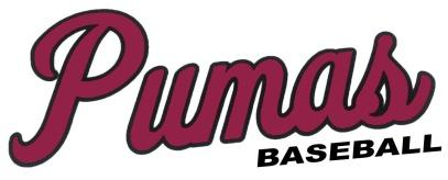 puma-baseball-script-cardinal